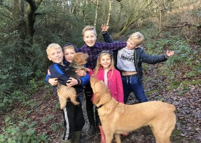 family dog walking service rotherfield withyham